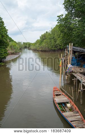 Wide angle view of a wooden boat and dock on the river of a mangrove forest ecosystem. Rayong province Thailand. Nature and ecology concept.