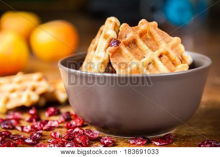 Delicious homemade shortbread waffles with dried cranberries in a brown ceramic bowl closeup. Selective focus very shallow depth of field