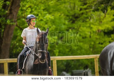 Lovely Young Brunette With Sunglasses, Riding A Horse