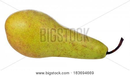 Conference pear isolated on white background