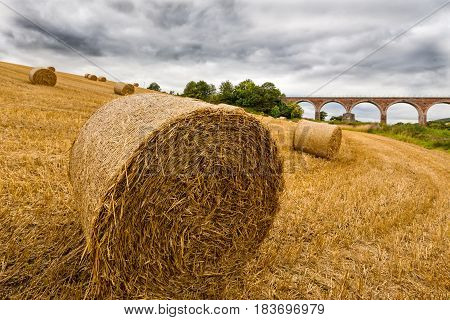 Haystacks on the field near Leaderfoot Viaduct, cloudy sky