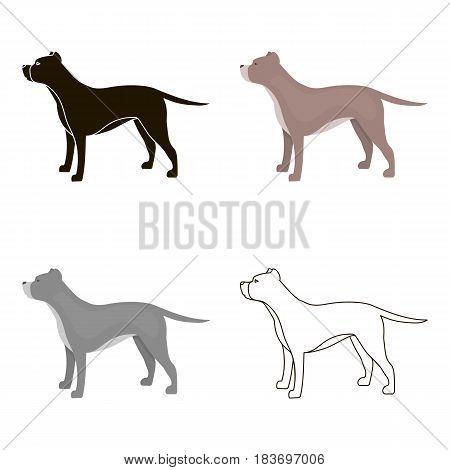 Pitbull vector illustration icon in cartoon design