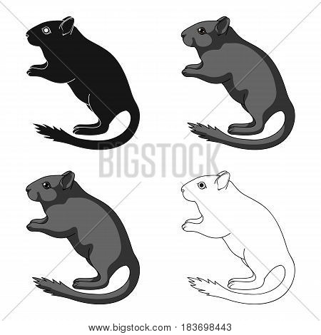 Gray gerbil.Animals single icon in cartoon style vector symbol stock illustration .