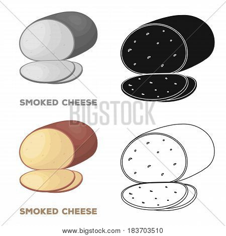 Smoked cheese.Different kinds of cheese single icon in cartoon style vector symbol stock illustration .