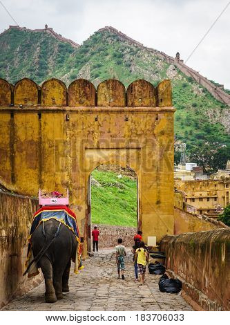 People Riding Elephants At Amber Fort In Jaipur, India