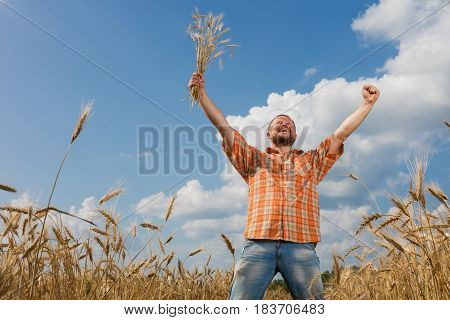 Farmer proudly raised his hands with ripe ears