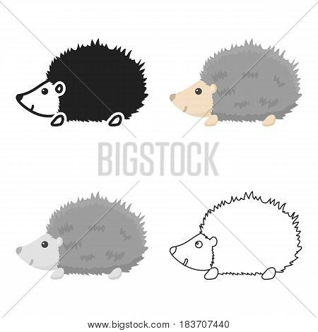 Hedgehog icon cartoon. Singe animal icon from the big animals cartoon.