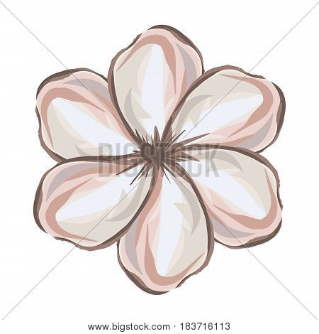 white background with watercolor malva flower vector illustration