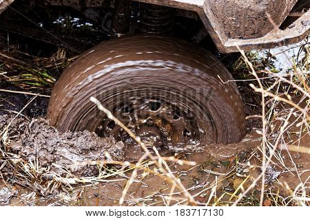 Vehicle stuck in the mud. Closeup rotating wheel of the car slips in the mud in the swamp.