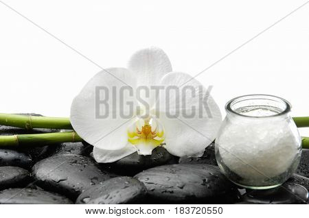 white orchid with bamboo grove ,salt in bottle and wet black stones