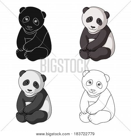 Panda.Animals single icon in cartoon style vector symbol stock illustration .