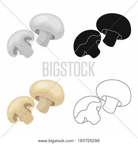 Champignon.BBQ single icon in cartoon style vector symbol stock illustration .