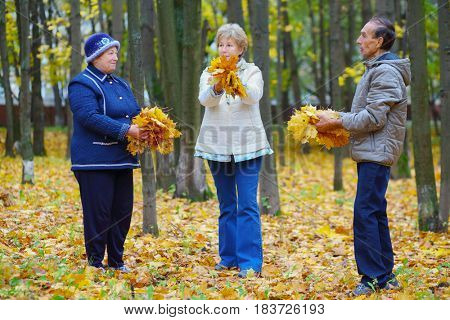 Two elderly women and man hold yellow maples in autumn park with fallen leaves
