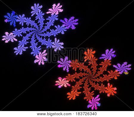 the abstract fractal symmetrical and colorful snowflakes