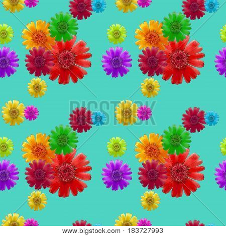 Cosmos. Texture of flowers. Seamless pattern for continuous replicate. Floral background photo collage for production of textile cotton fabric. For use in wallpaper covers.