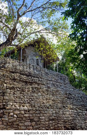 Vertical view of the Temple of the Paintings in the ancient Mayan ruins of Coba Mexico