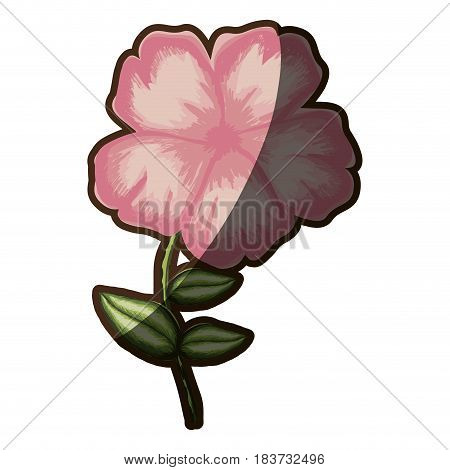 silhouette shading of malva flower in pink color vector illustration