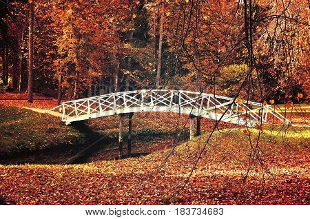 Autumn landscape - white wooden bridge in the autumn park among the yellowed autumn trees and fallen autumn leaves. Autumn park landscape colorful autumn view. Autumn background