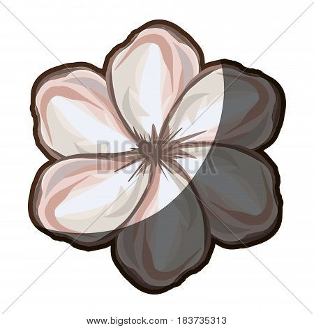 watercolor silhouette shading of single malva flower closeup vector illustration