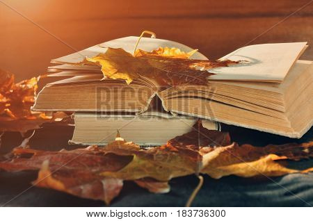 Autumn concept. Autumn still life - worn books among the autumn leaves under bright sunlight. Autumn objects. Focus at the book's spine.Autumn retro still life with autumn leaves. Autumn still life