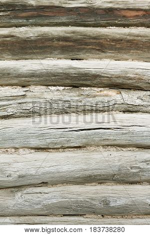 Wood texture background of old logs. Wall rustic wooden house close-up