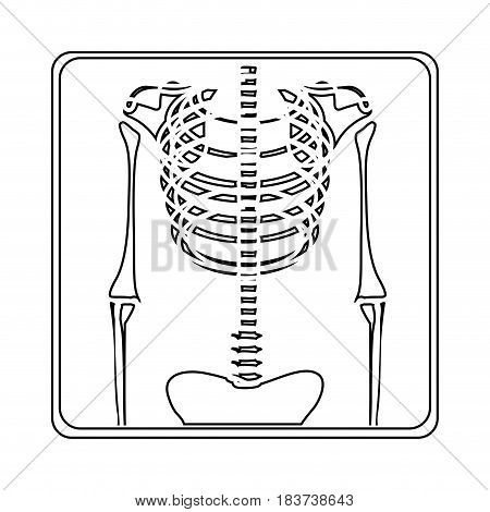 silhouette with x-ray of bones vector illustration
