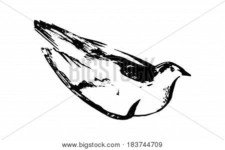Hand drawn black stylized bird painted by ink. Sketch style. Vector illustration.