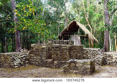 Ancient Mayan ruins in Coba Mexico in the Yucatan Peninsula