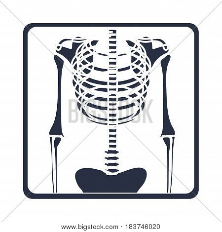 white background with dark blue symbol of chest radiography vector illustration