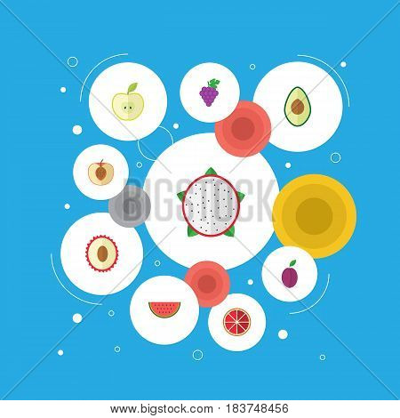 Flat Litchi, Jonagold, Apricot And Other Vector Elements. Set Of Fruit Flat Symbols Also Includes Dragon, Plum, Melon Objects.