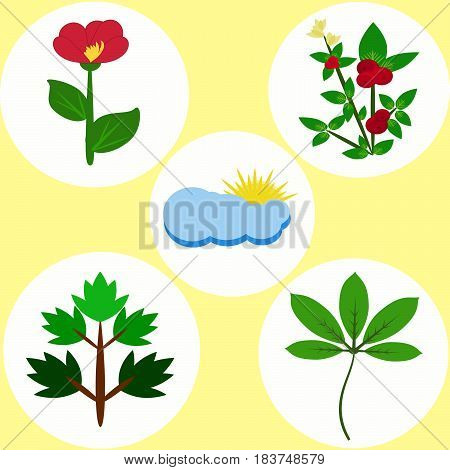 Set of colored flat natural elements from flowers bush foliage clouds