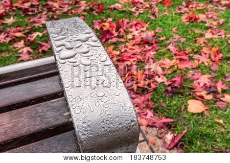 Macro waterdroplets on the bench with red yellow and green colorfull leaves of UK autumn.