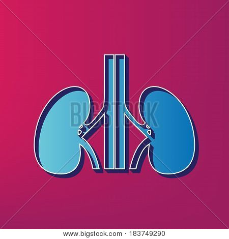 Human anatomy. Kidneys sign. Vector. Blue 3d printed icon on magenta background.