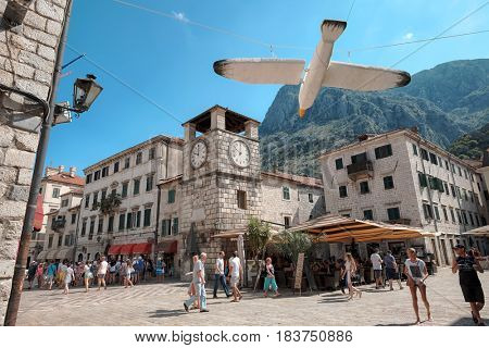KOTOR, MONTENEGRO - JULY 19, 2016: tourists crowd the Square Of Arms with Clock Tower in Old Town. In the foreground, seagull installation for the Kotor Festival Of Theater For Children