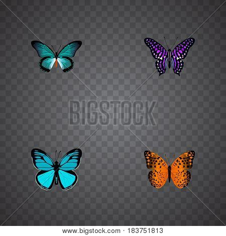 Realistic Polyommatus Icarus, Sky Animal, Danaus Plexippus And Other Vector Elements. Set Of Butterfly Realistic Symbols Also Includes Purple, Butterfly, Violet Objects.
