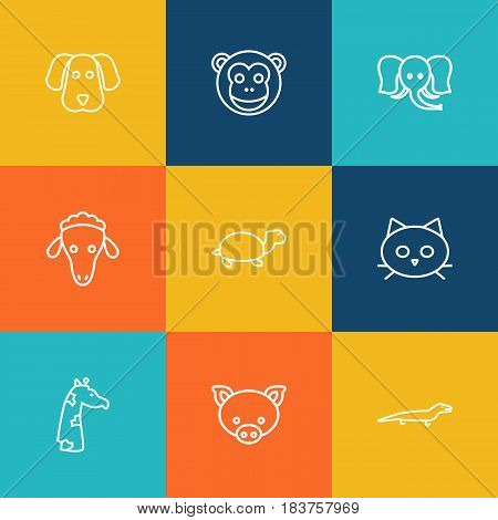 Set Of 9 Beast Outline Icons Set.Collection Of Sheep, Pig, Dog And Other Elements.