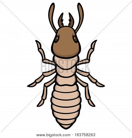 A vector illustration of a small Termite.