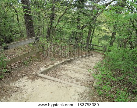 Bluff path walkway towards Sac Canyon at Starved Rock State Park with new spring tree growth