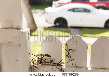 Residential white picket fence and gate near parked vehicles on street.