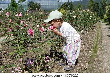 Boy - child little gardener