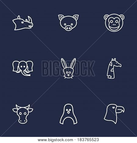 Set Of 9 Alive Outline Icons Set.Collection Of Penguin, Eagle, Pig And Other Elements.