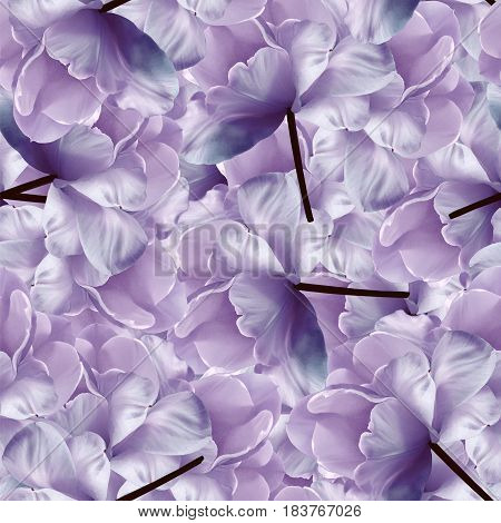 Seamless infinite floral blue-purple background. For design and printing. Background of natural tulips. Wall-papers.