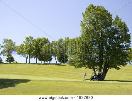 Fairway Golfers