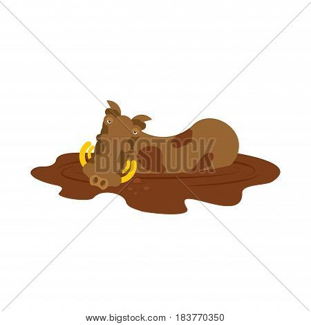 Warthog In Puddle. Wild Boar In Mud. African Pig. Wild Animal On White Background