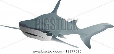 vector - big shark swimming forward