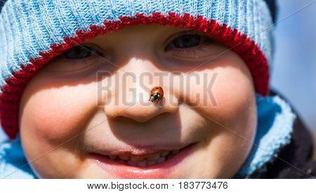 Baby boy face with ladybug. Ladybug sitting on baby boy nose. Boy portrait
