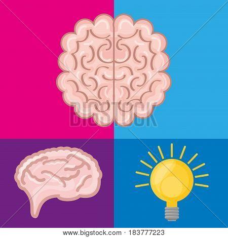 brain set icon knowledge and creativity, vector illustration