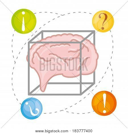 brain thinking in differents questions, vector illustration