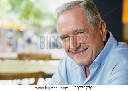 Portrait of happy senior man sitting in cafe