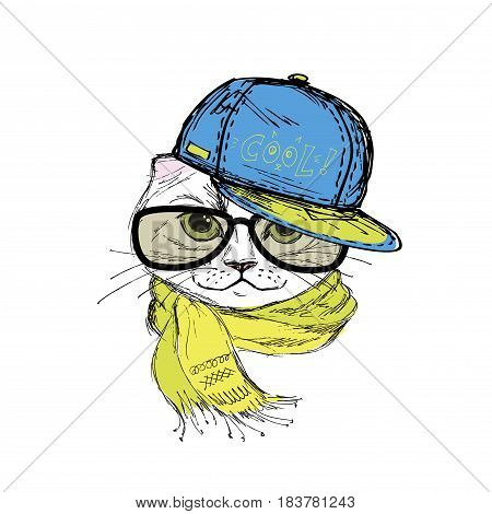 Funny fashion cat in a cap, scarf and glasses. Hand drawn.Vector illustration